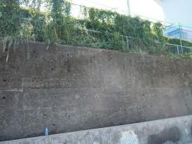 この壁、結構高いんだよね